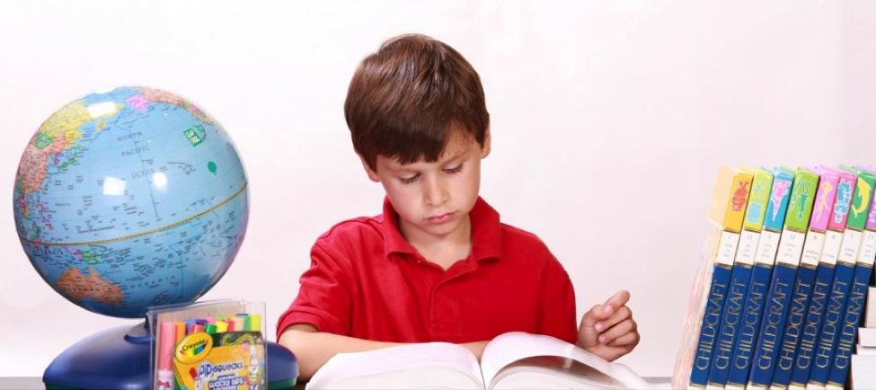 Kako Učenje Stranog Jezika Utiče na Razvoj Mozga