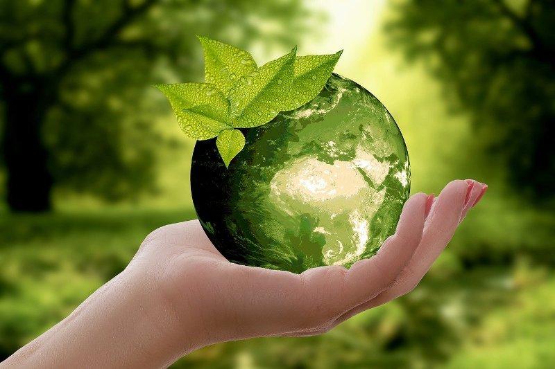 Mali koraci ka velikim ekološkim promenama koje svako može da napravi